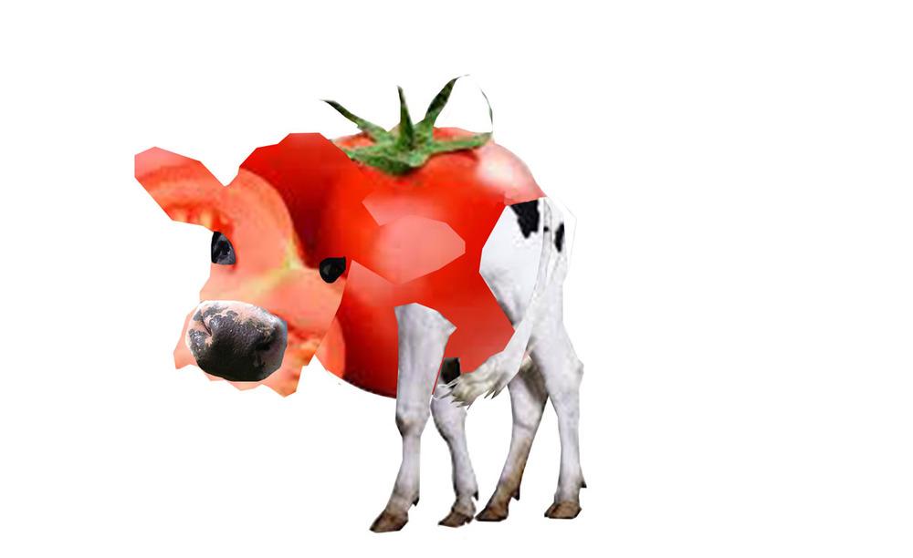 Myo-tomato007.jpg