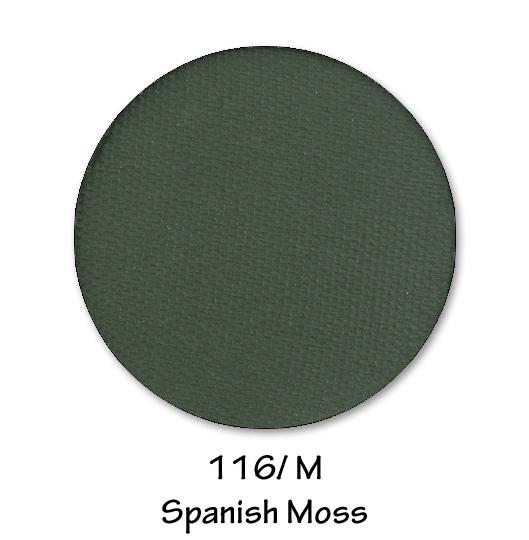 116- SPANISH MOSS.jpg