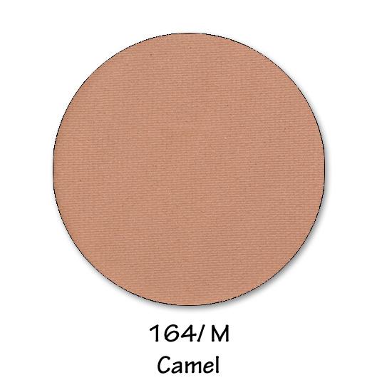 164- CAMEL.jpg