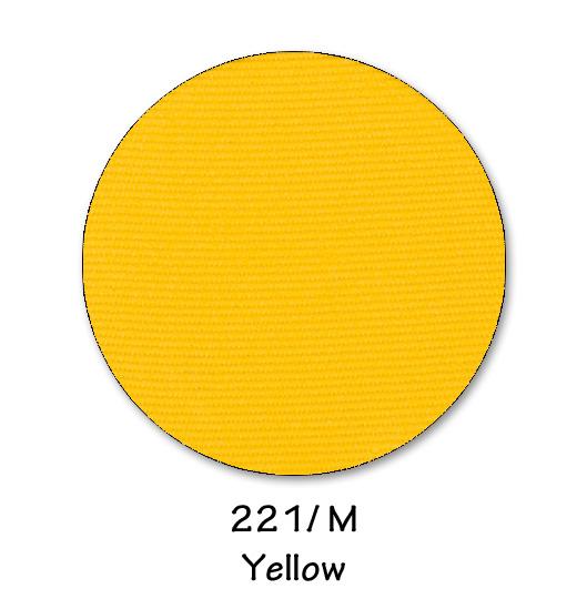 221- YELLOW.jpg