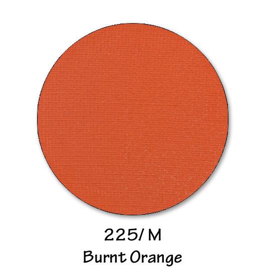 225- BURNT ORANGE.jpg