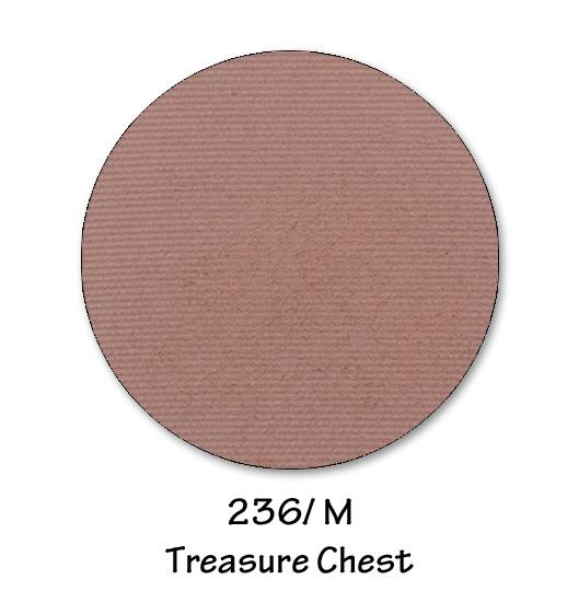 236- TREASURE CHEST.jpg