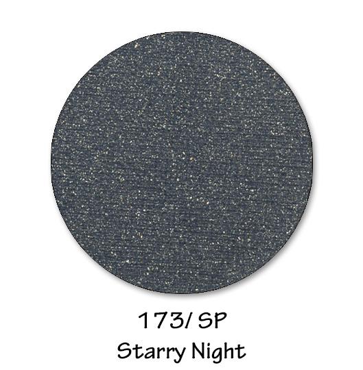 173- STARRY NIGHT.jpg