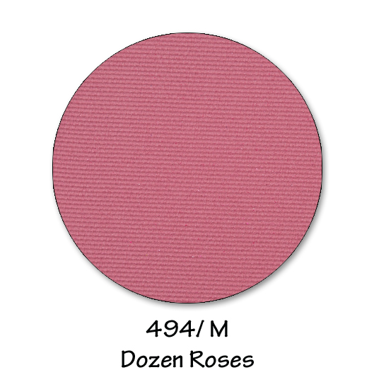 494- dozen roses copy.jpg