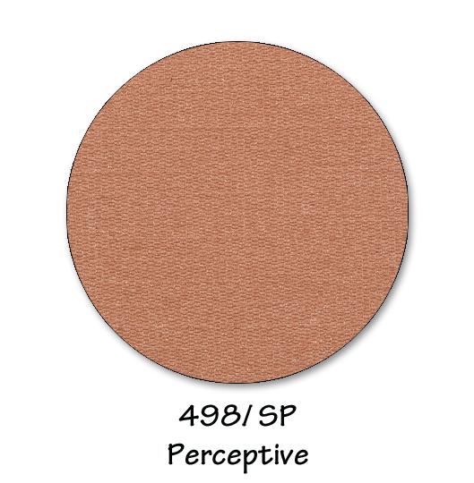 498- perceptive copy.jpg