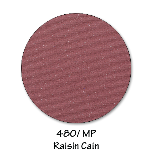 480- raisin cain copy.jpg