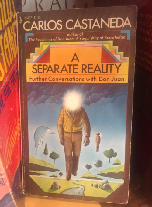 a separate reality carlos castaneda.png