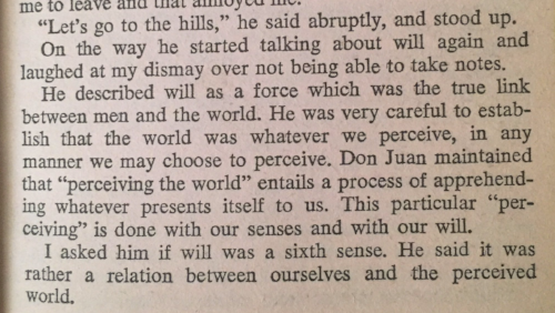 carlos castaneda a separate reality excerpt 1 go to the hills.png