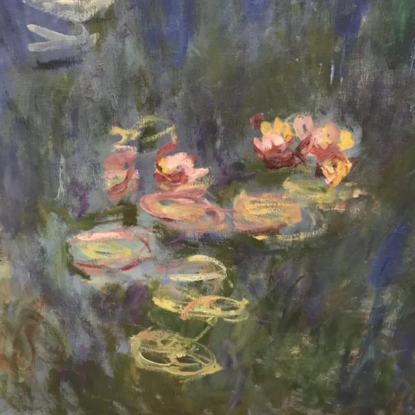 Monet Lily Detail.jpg