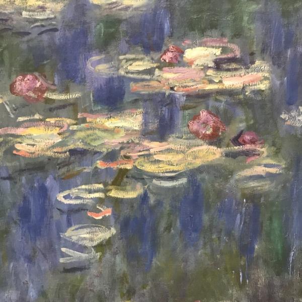 Monet Lily detail 2.jpg