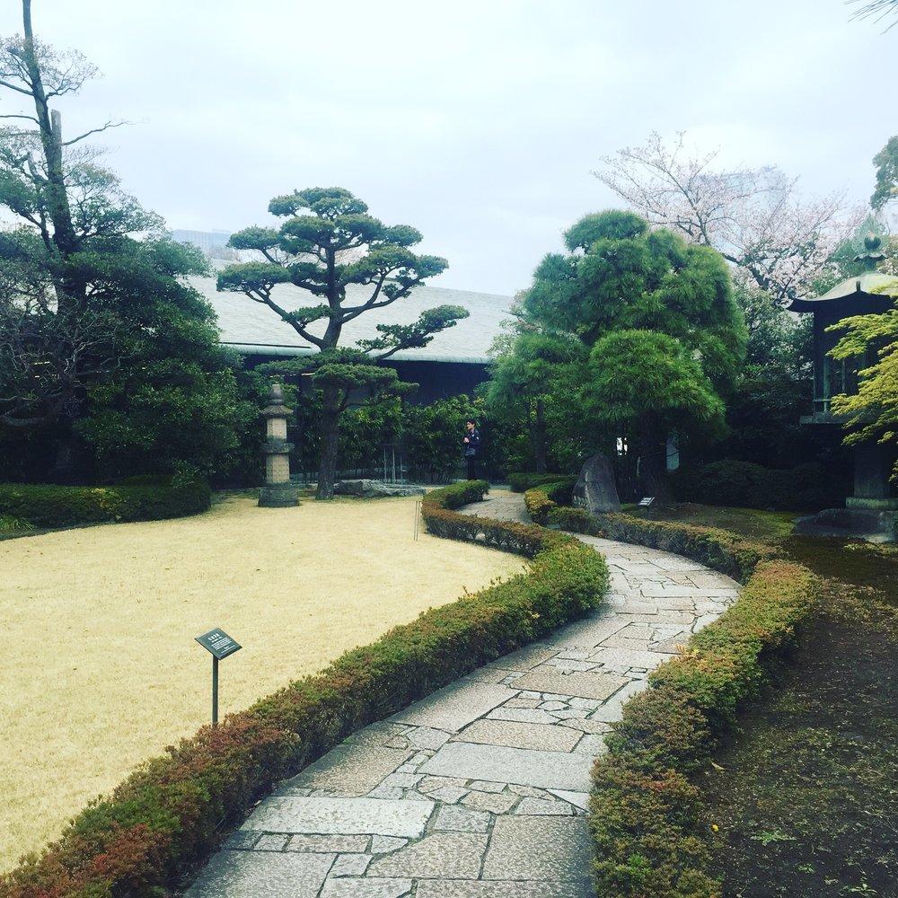 nezu garden path.JPG
