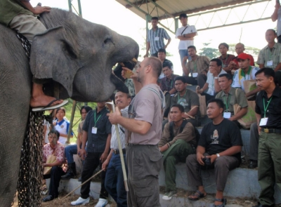 Demonstration on training elephants for a medical procedure