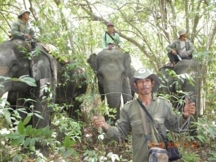 Mahout with disarmed snare