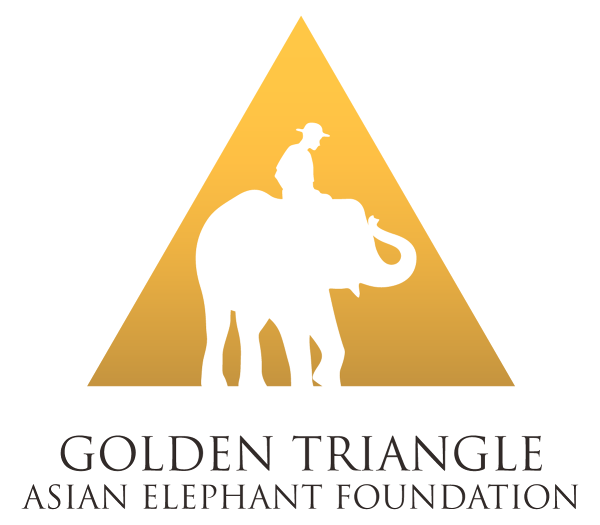 Golden Triangle Asian Elephant Foundation.png
