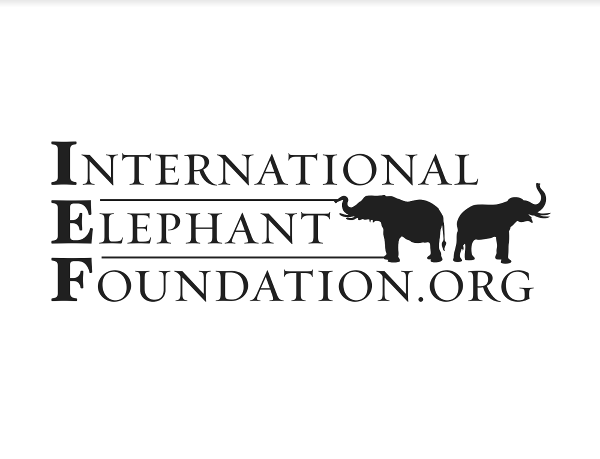 International Elephant Foundation.png