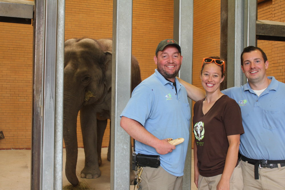 Rob Dempsey, elephant keeper, Mindy Ussrey, elephant manager, Gary Steele, elephant keeper