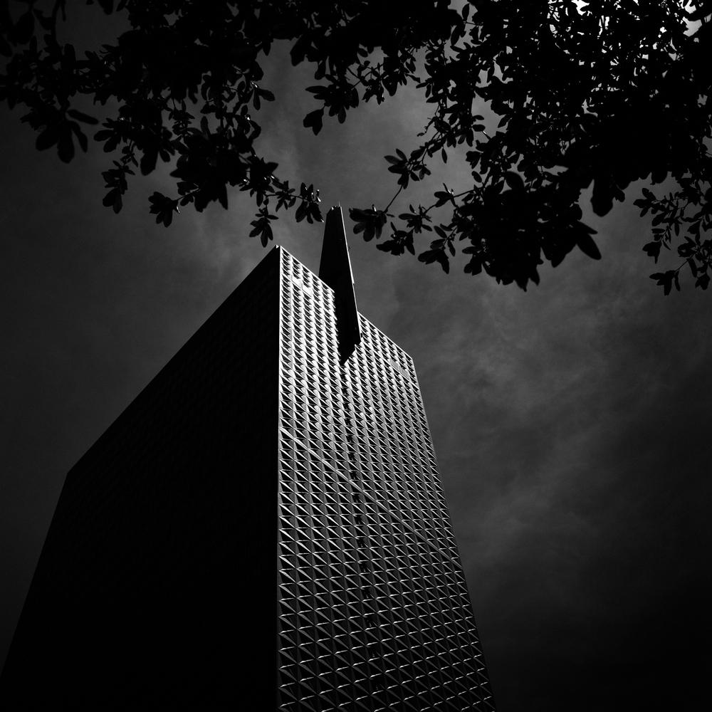 Dallas 05