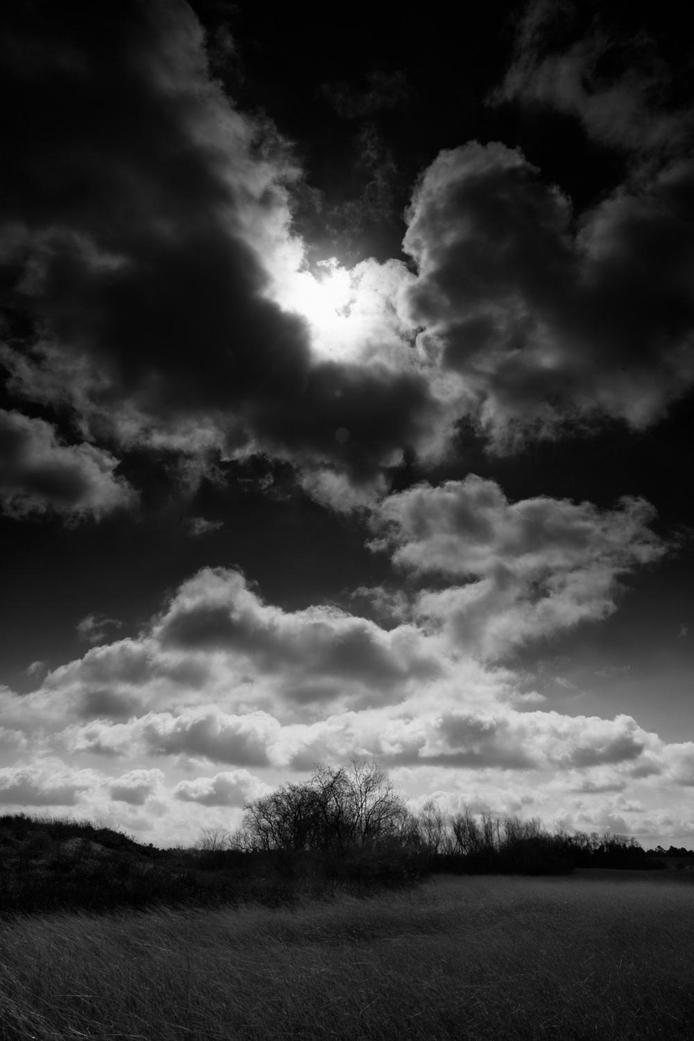 Landscape-16.jpg