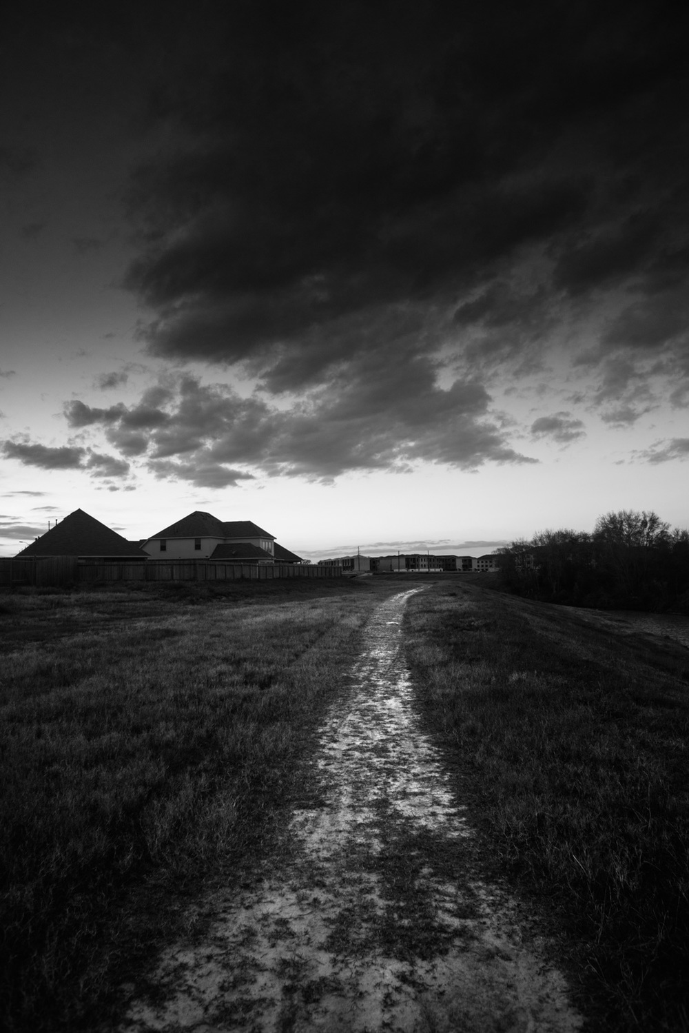 Landscape-20.jpg