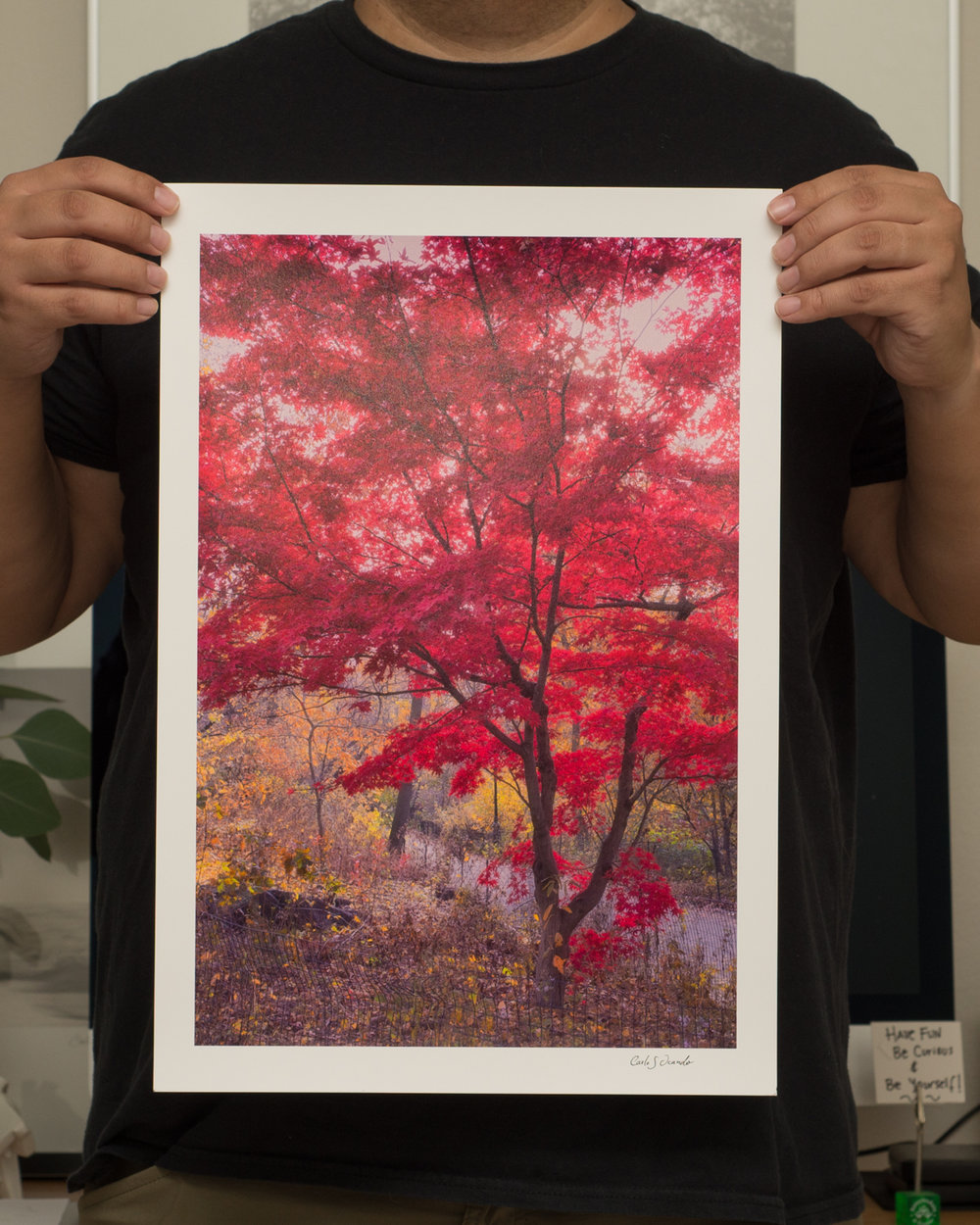 This one was on Central Park a year later, It's amazing the different red hues you can see on this print, I also angle it a little bit so you can see the texture and the beautiful reflection you get the Canson Platine papers.