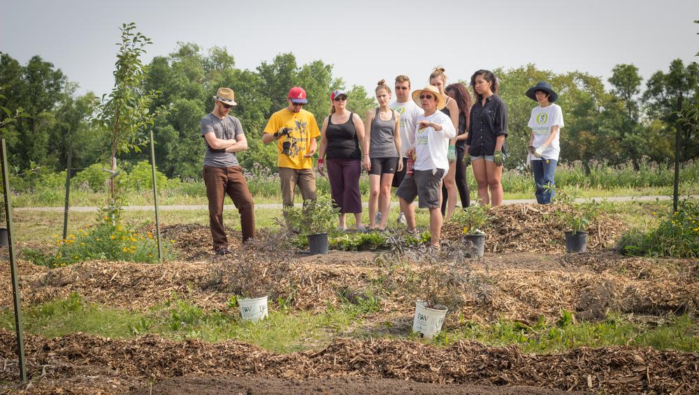 permaculture2014-86.jpg