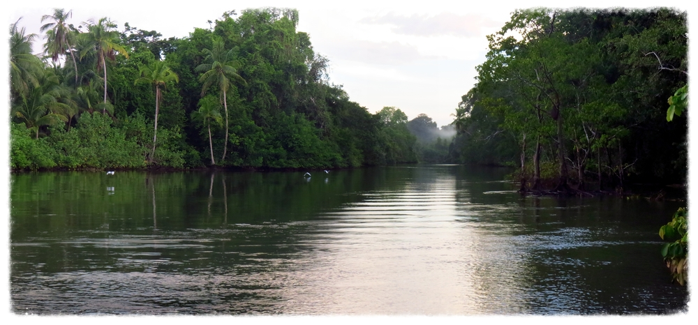 osa_river