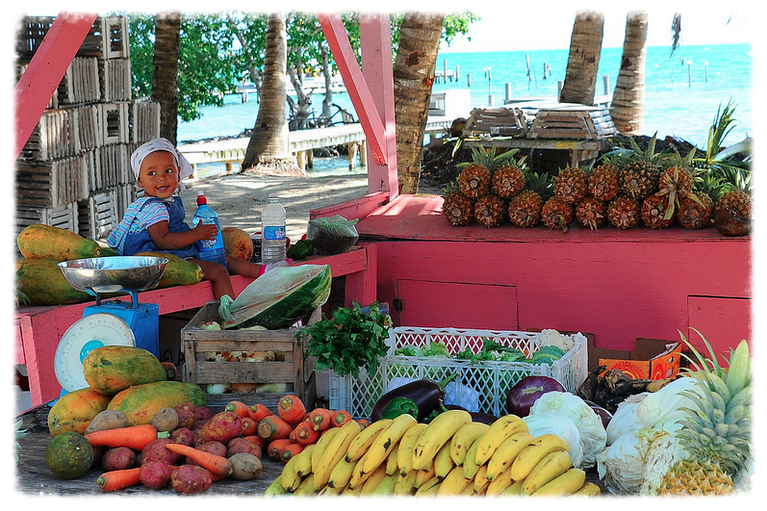 belize_fruits1.jpg
