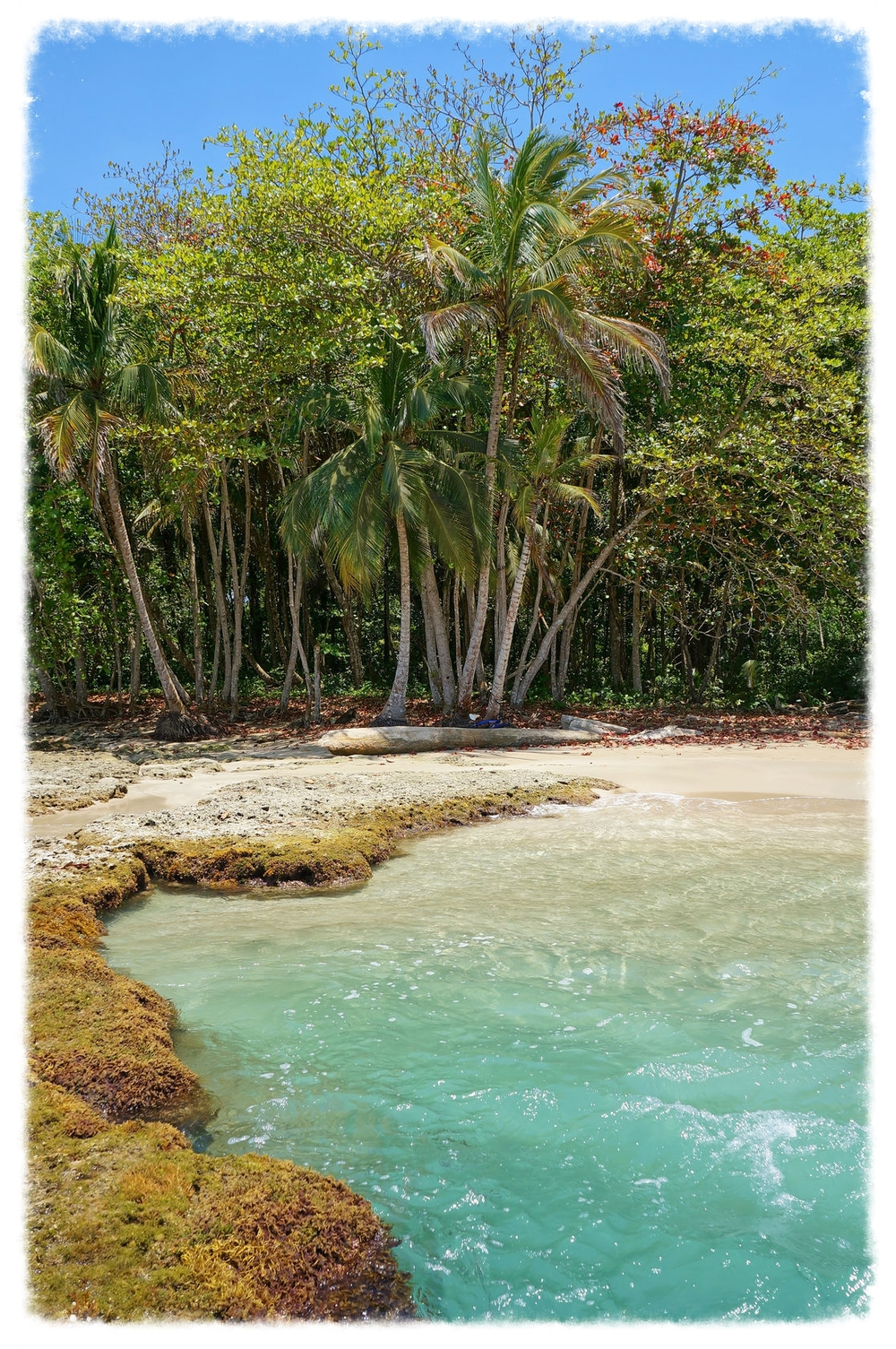 costa-rica-playa-chiquita.jpg