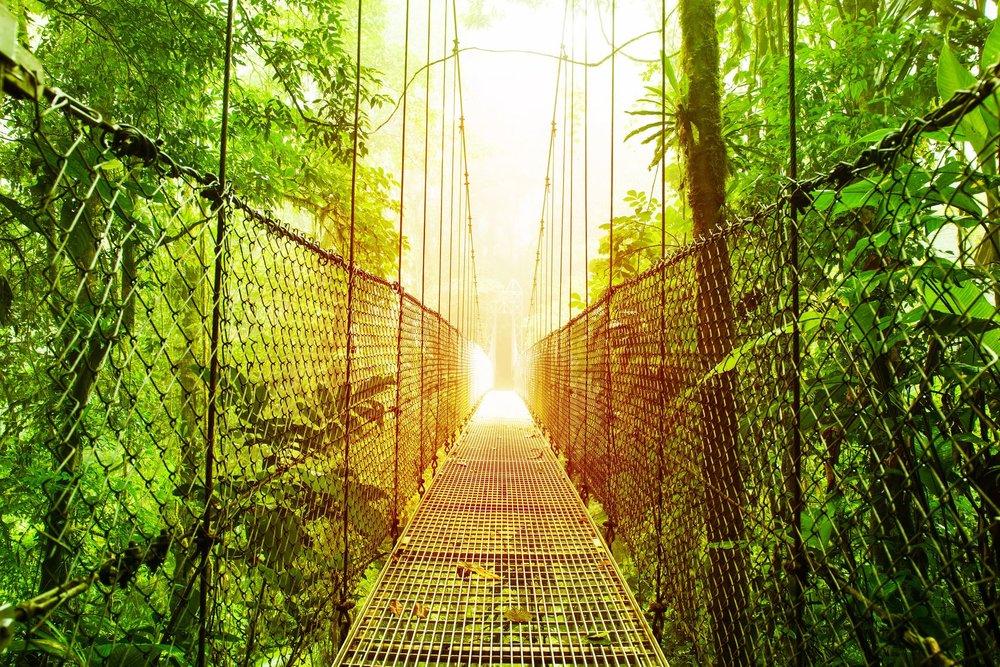 costa rica - hanging bridges arenal.jpg