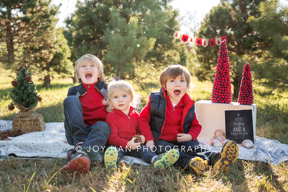 Family Photographer Northern VA Loudoun County Fairfax County