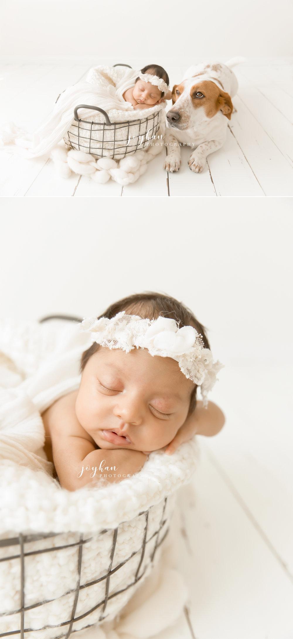 fairfax-va-newborn-photographer