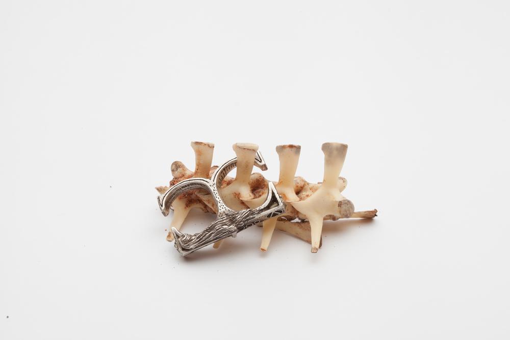 Karen's Ring