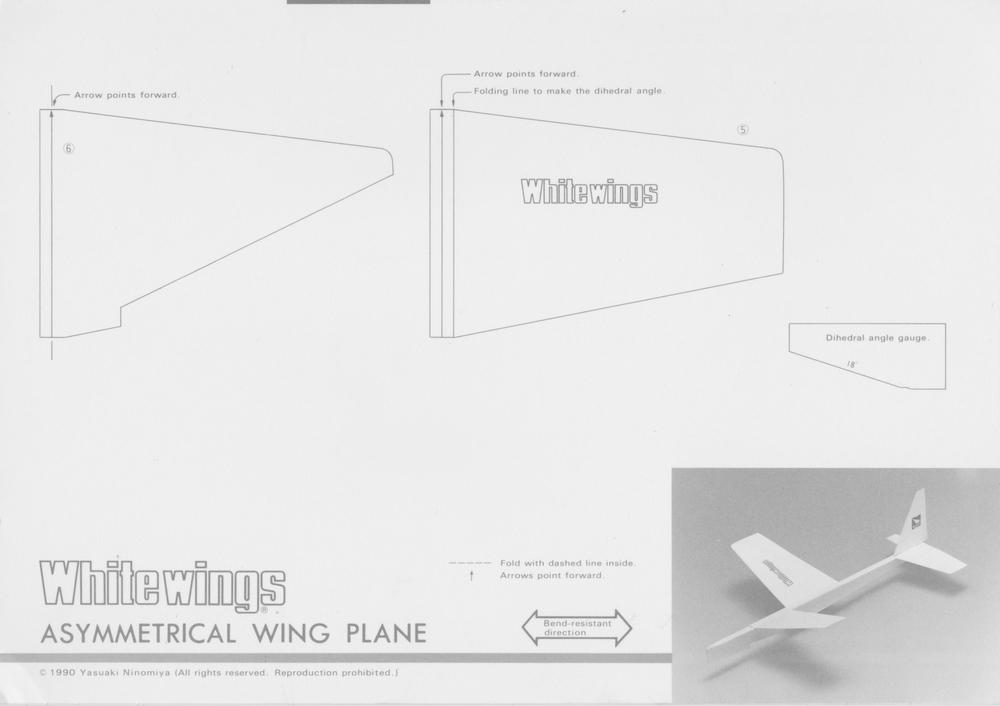 Asymmetrical_Wing_Plane_1.jpeg