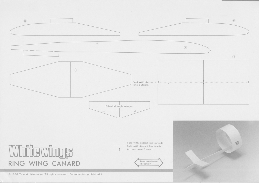 Ring_Wing_Canard_1.jpeg