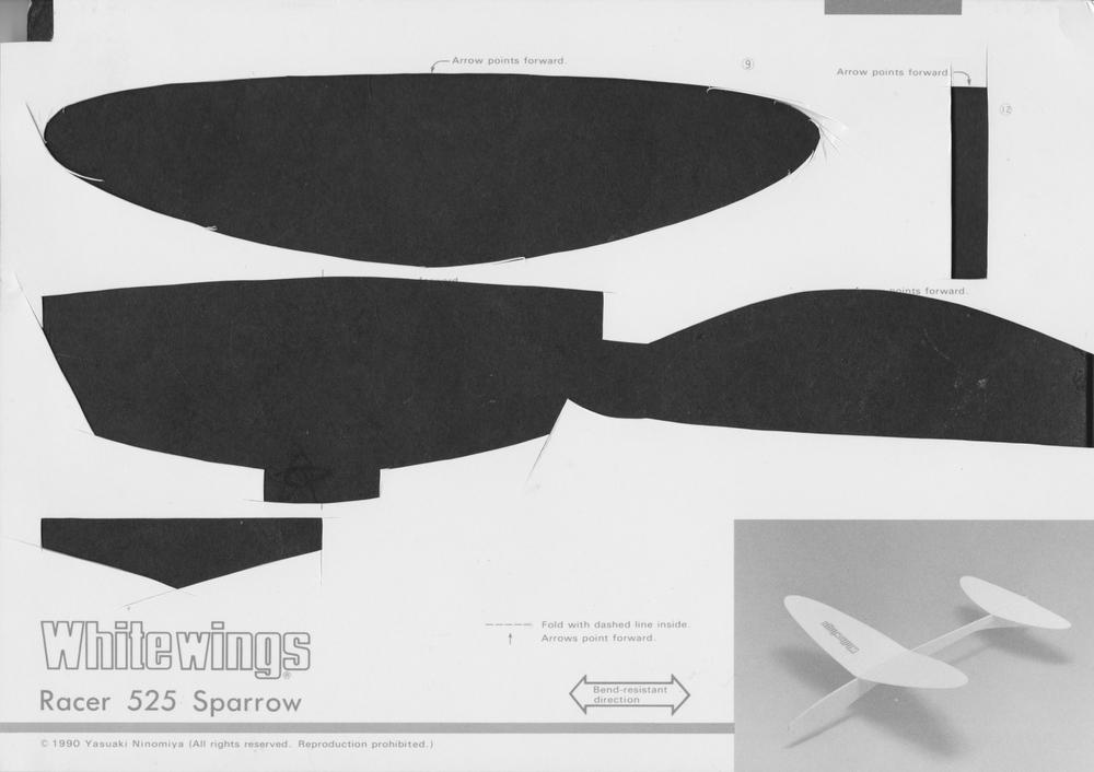 Sparrow_Racer_Wing_Scraps.jpeg