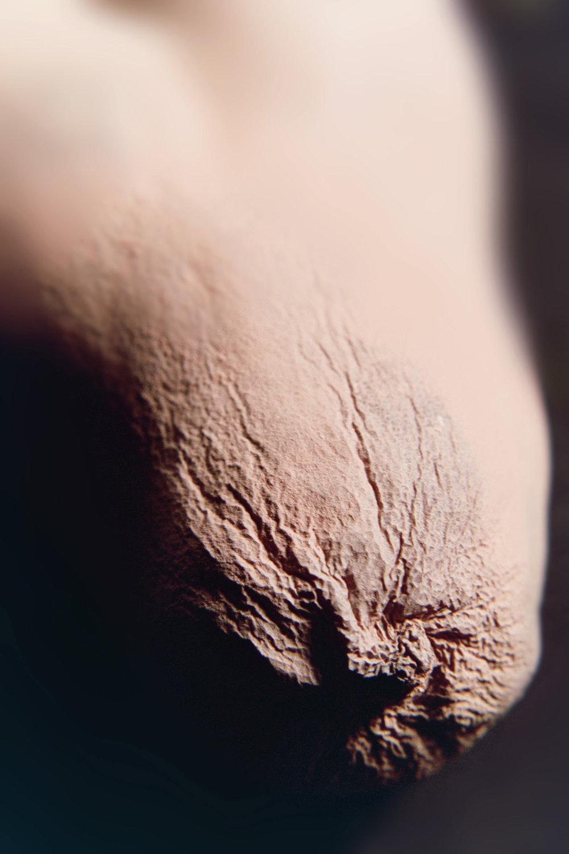 Appendage, 2007