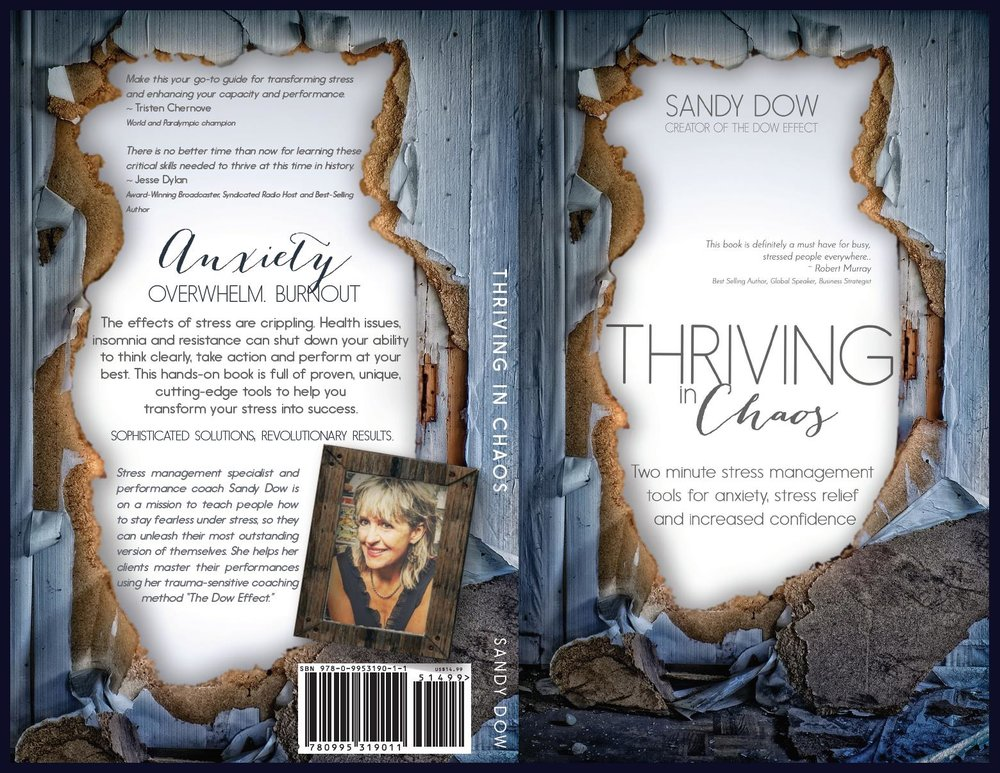 Thriving in Chaos Cover.jpg