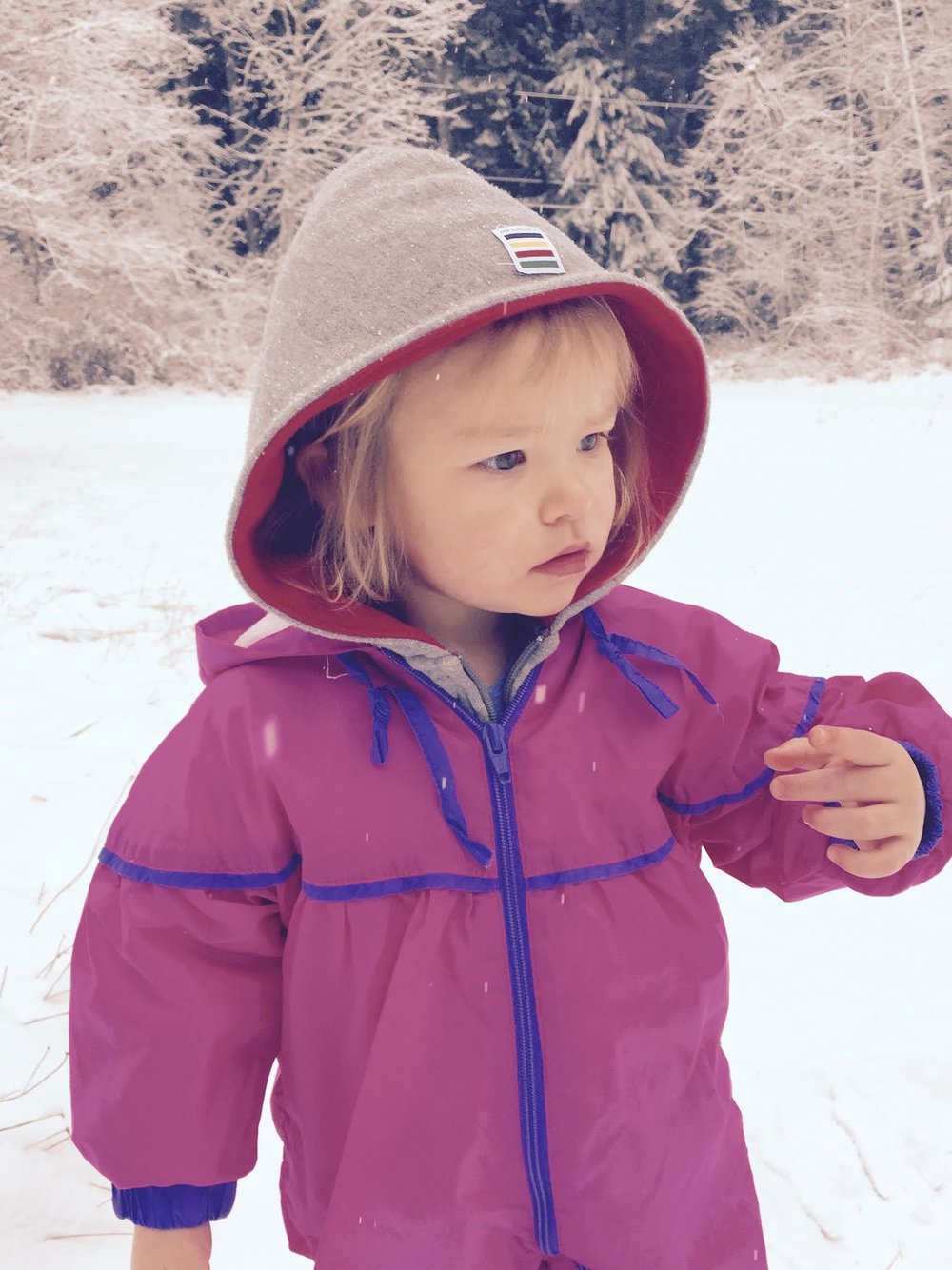 I had to share a photo of my grand daughter taking in the magic of winter.