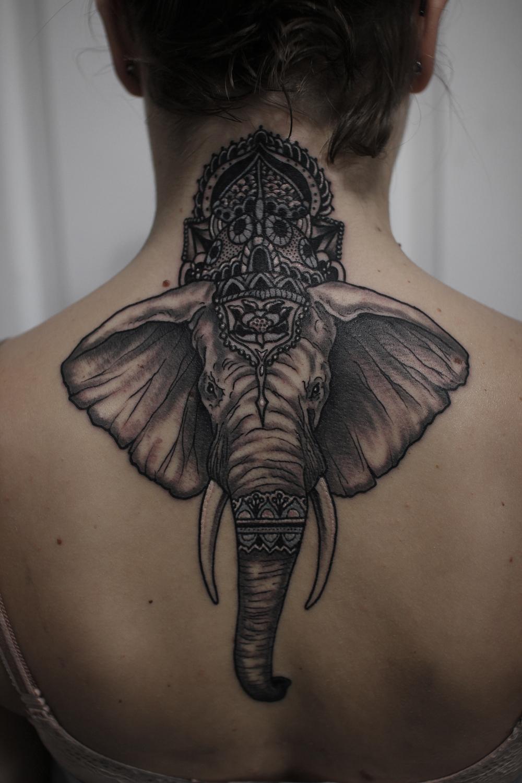 italian elephant.jpg