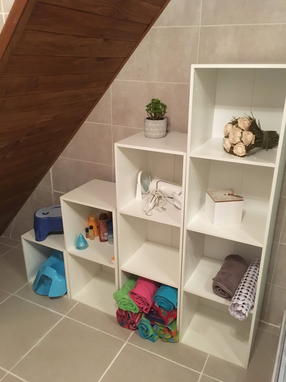 Shower room storage