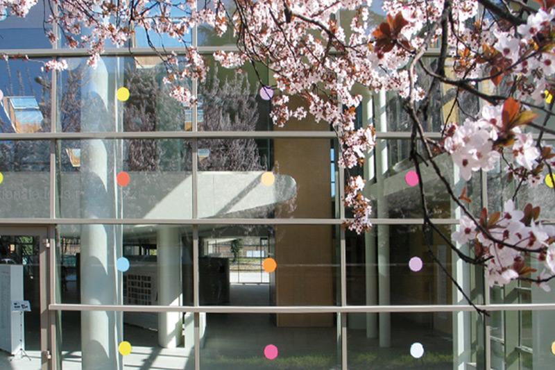 Centro Internazionale per l'infanzia Loris Malaguzzi, 2° stralcio