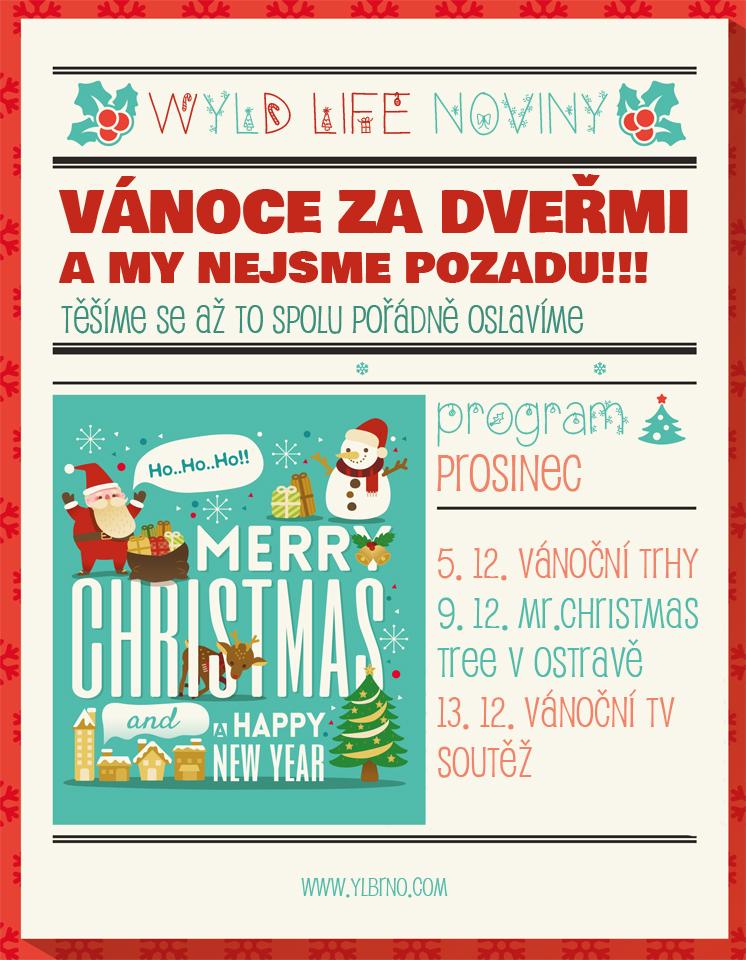 Vanocni noviny_small.jpg