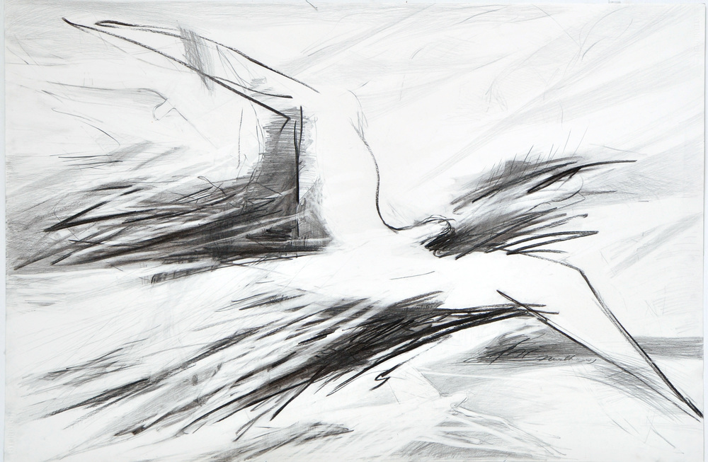 73x110 Angler coal on paper1743.jpg