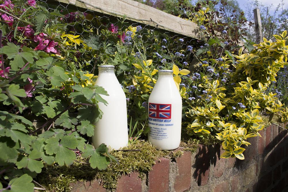 Reusable Glass Milk Bottles