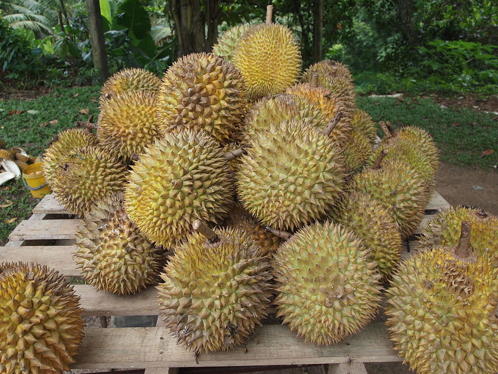I actually like durian