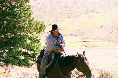 mountain cowboy(500x332).jpg