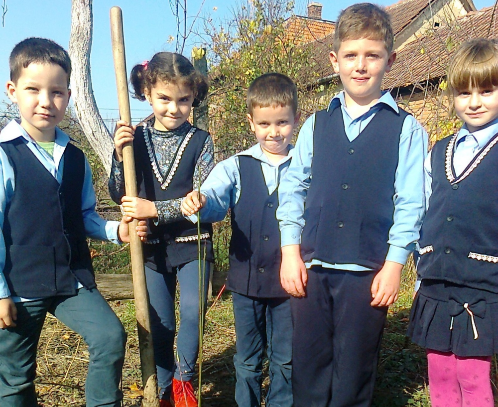 Plant a Tree for Peace Romania 2015