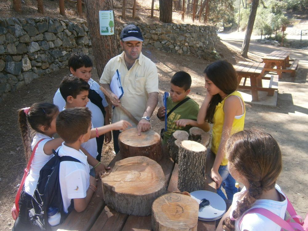 Studying the cross sections of a tree trunk - Apsiou Primary School.jpg