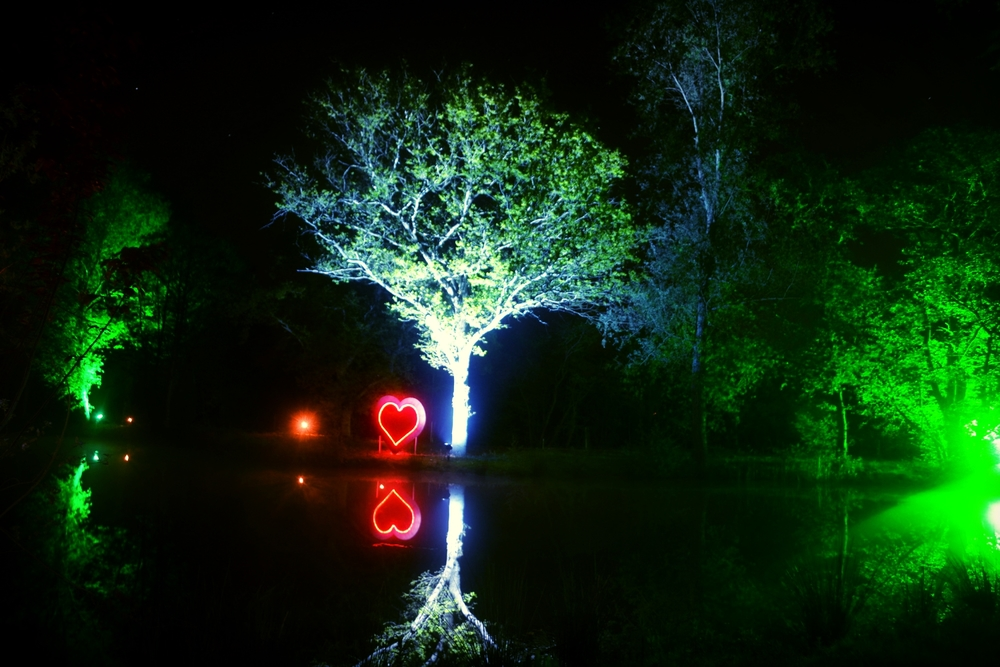 Magical lighting at Chalkney Water Meadow