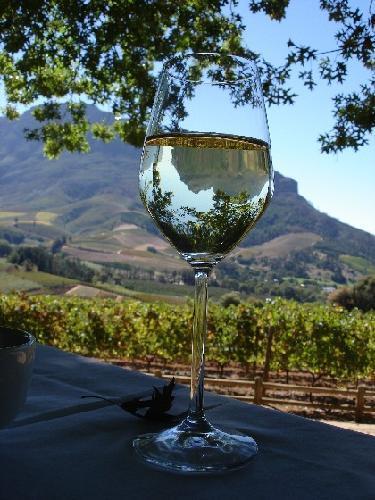 Delaire-wine-farm-Stellenbosch.jpg